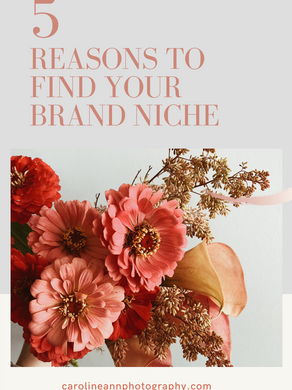 5 Reasons to Find Your Brand Niche