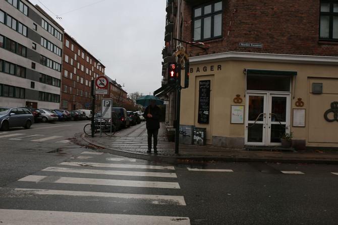 Én for alle og alle for én - Nedbørshåndtering på Frederiksberg