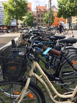 Cykeladfærd på Christianshavns Torv