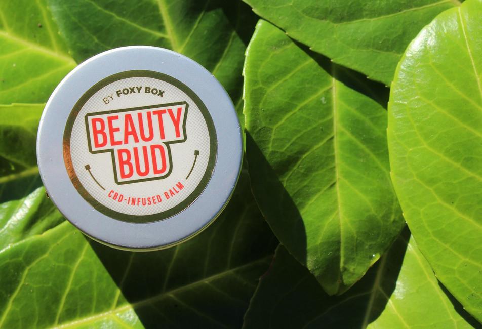 fb-beautybud2-compressor.jpg