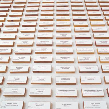 Garden of Words I Willem Boshoff Exh1013
