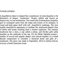 25-Fungilliform-0-1-.jpg