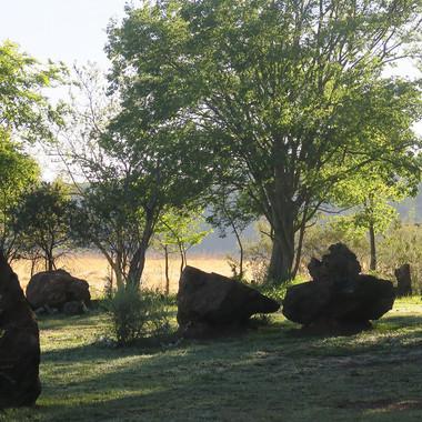 Stone Circle Willem Boshoff Nirox004.jpg