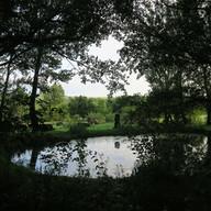 Stone Circle Willem Boshoff Nirox034.jpg