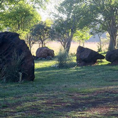 Stone Circle Willem Boshoff Nirox021.jpg
