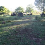 Stone Circle Willem Boshoff Nirox020.jpg