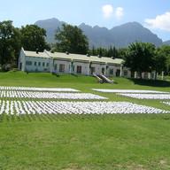 Garden of Words III Willem Boshoff  Some