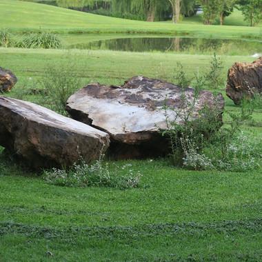 Stone Circle Willem Boshoff Nirox037.jpg