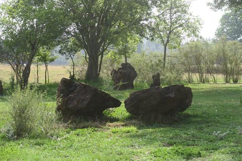Stone Cicle Willem Boshoff Nirox028.jpg