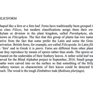 21-Filiciform-0-1-.jpg