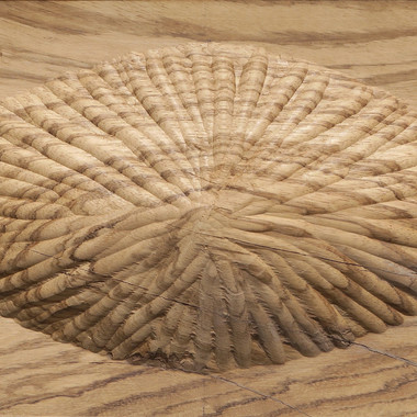 24-Fossulate-4-.jpg
