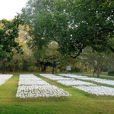 Garden of Words III Willem Boshoff  Nels