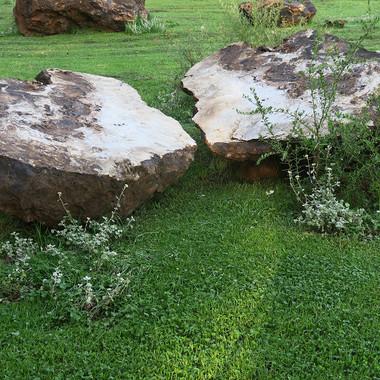 Stone Circle Willem Boshoff Nirox038.jpg
