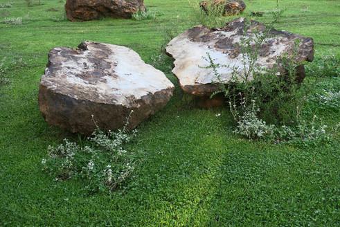 Stone Cicle Willem Boshoff Nirox038.jpg