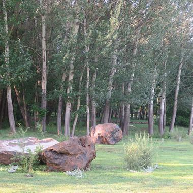 Stone Circle Willem Boshoff Nirox031.jpg