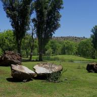 Stone Circle Willem Boshoff Nirox014.jpg