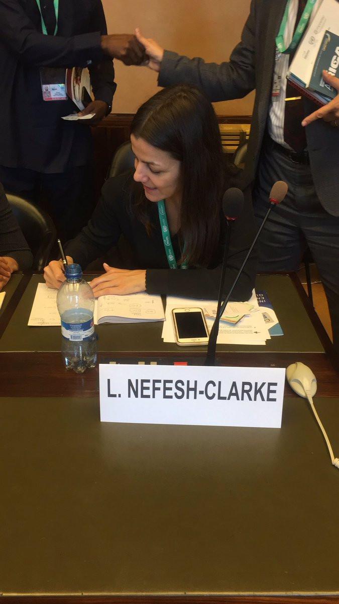 Lindsey Nefesh-Clarke, founder of Women's WorldWide Web