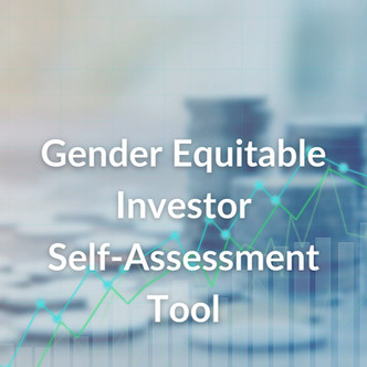 GEIT Self-Assessment Tool
