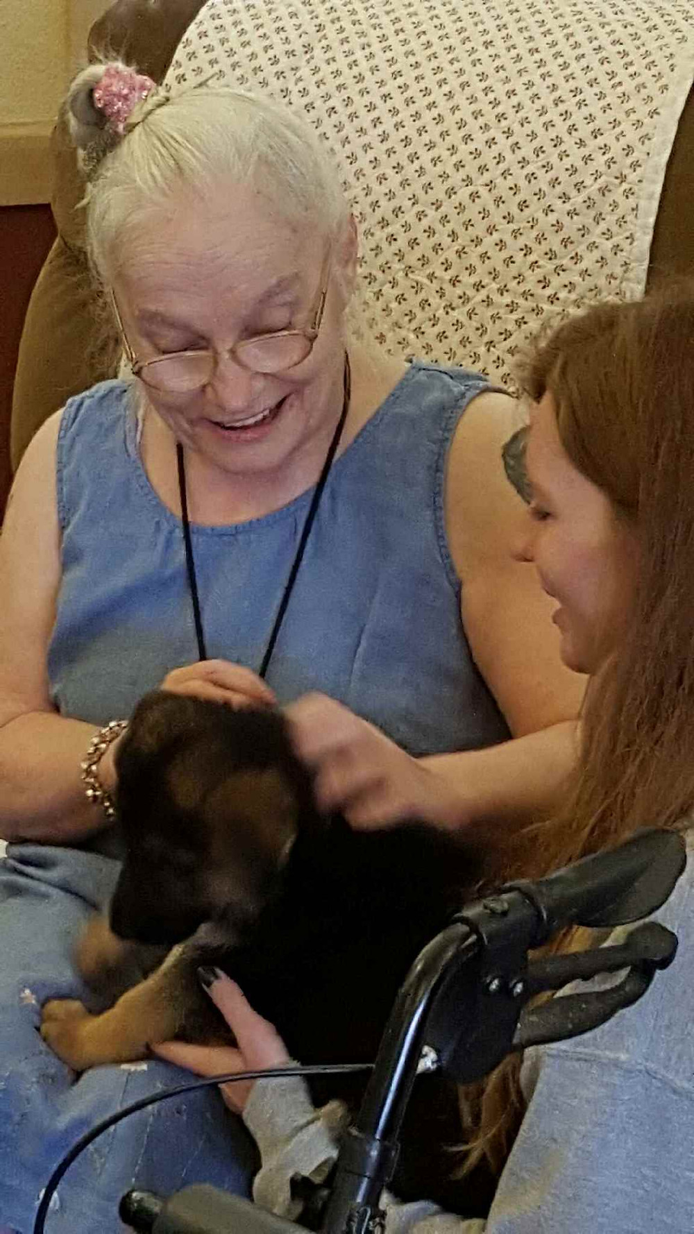 We take Flood Farm puppies to the senior center as part of their socialization training.