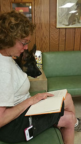 Owner Reading to GSD Pup
