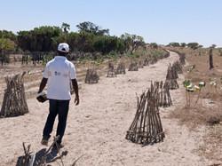 Visites sur le site de Ngolio (Tchad) © Action contre la Faim