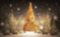 Christmas-Tree-in-Snow-7-22474-HD-Images