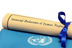 Universal Declaration of Human Rights.jp