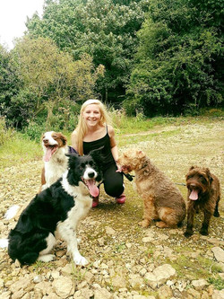 Ellie and the dogs