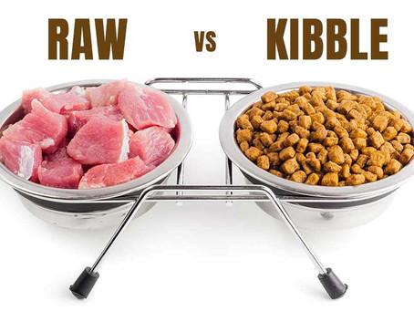 RAW VS KIBBLE