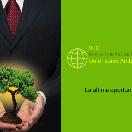 Crean Red de Defensores Ambientales