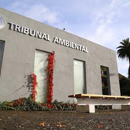 Indispensable la creación de tribunales ambientales:PVEM