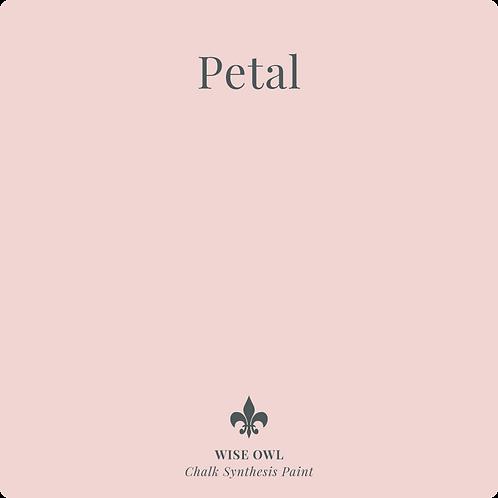 Petal - Chalk Synth Paint
