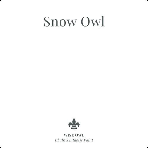 Snow Owl -Chalk Synth Paint
