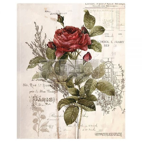 Botanical Rose  -Prima Transfer