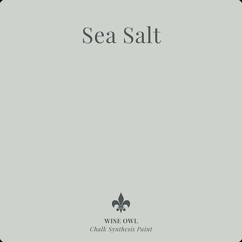Sea Salt - Chalk Synth Paint