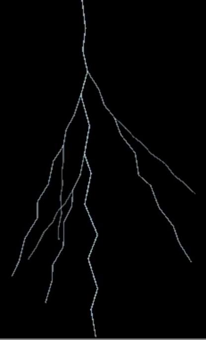 Lightning branch