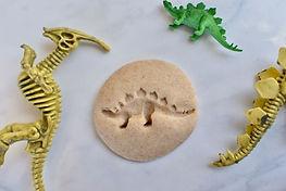 Dino Fossils.jpg