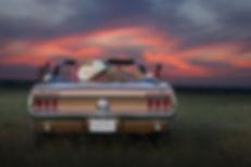 67_Mustang_Convertable.jpg