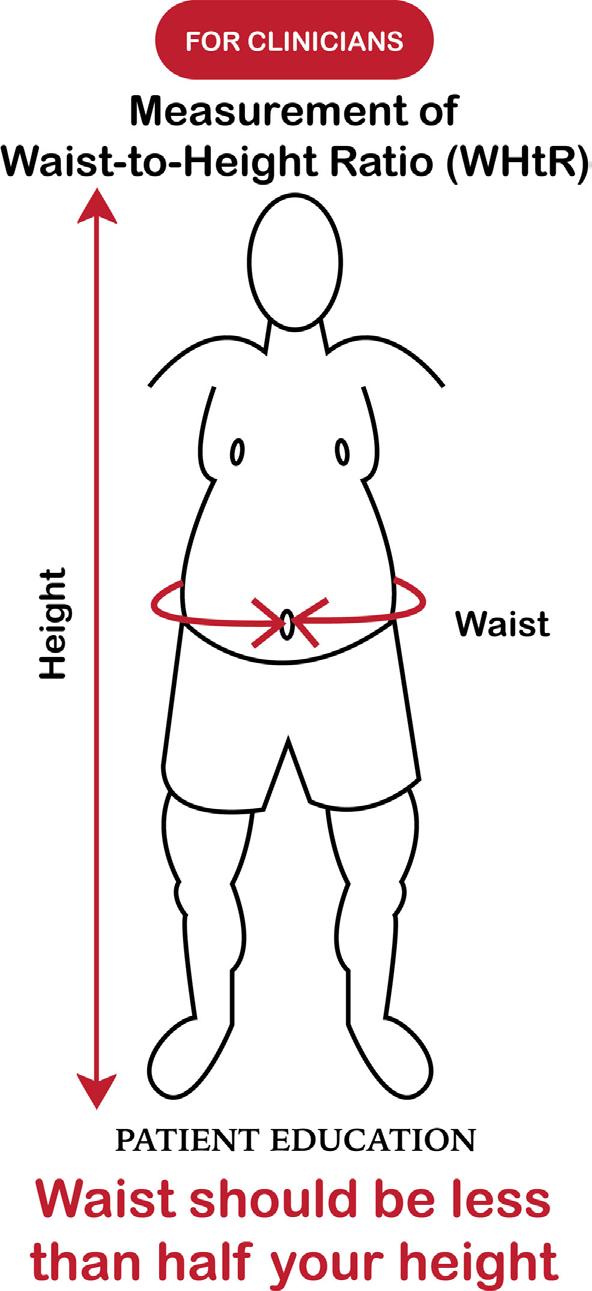 Circunferência da Cintura deve ser menor que a metade da altura.