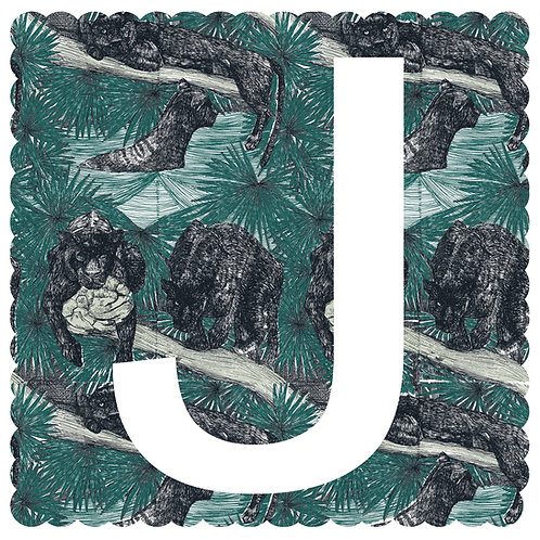 J is for Jaguar