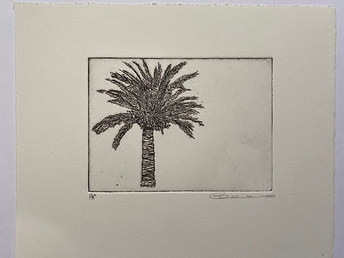 Palm, etching