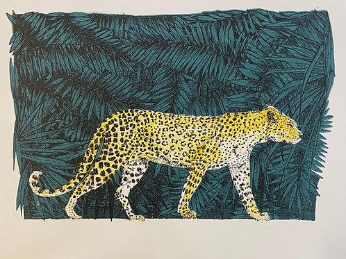 Little big cat - Leopard