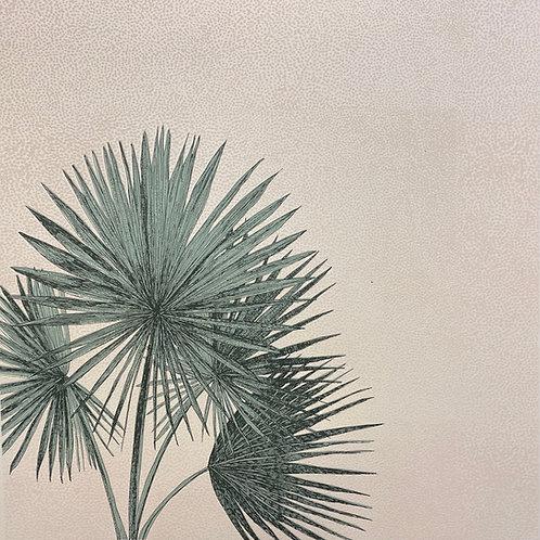 Palm Fanning