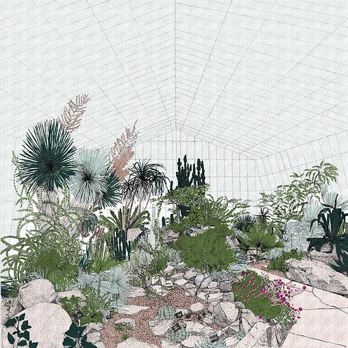 Hot Mass of Cacti