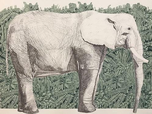 Nature's Gift Elephant
