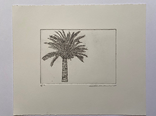 Palm, etching