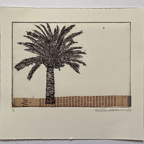 Palm and pink stripe with vertical text, chine colle etching