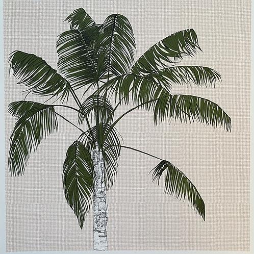 Palm Array