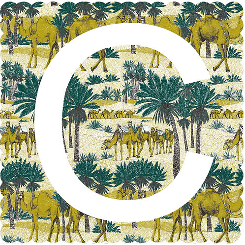 C is for Camel