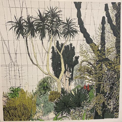 Cacti Cluster